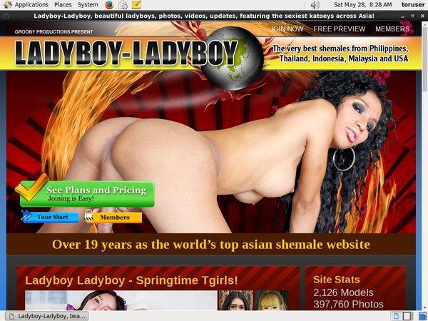 Ladyboy-ladyboy.com (SAVE 50%) Discount