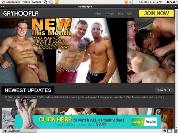 Gay Hoopla Account Trial
