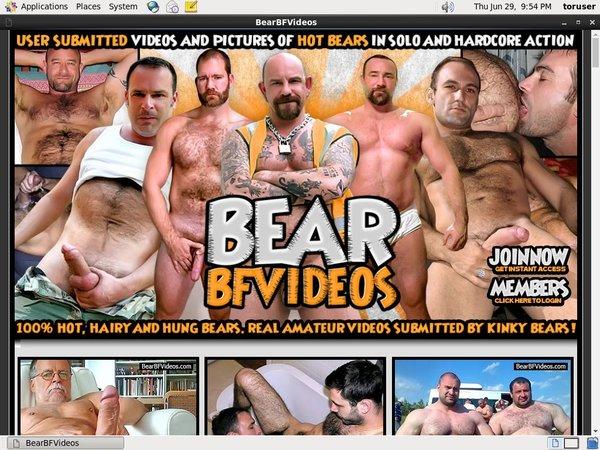 Free Bear BF Videos Full
