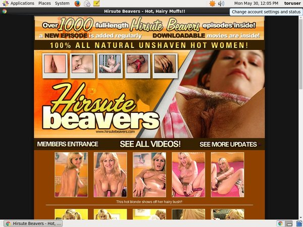 Hirsute Beavers Limited Time Discount