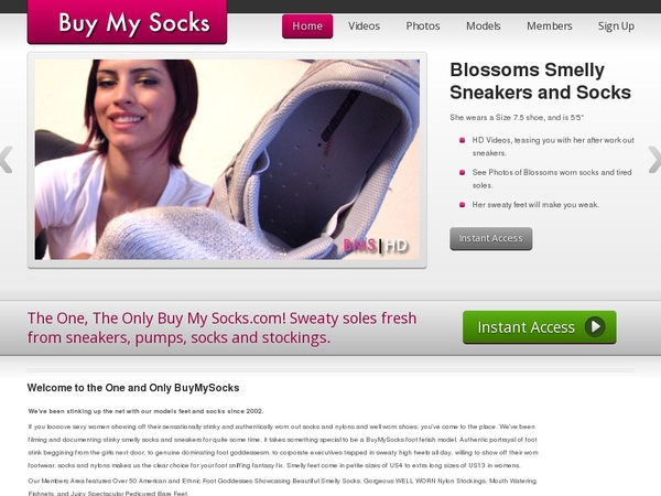 Buy My Socks Discount Today